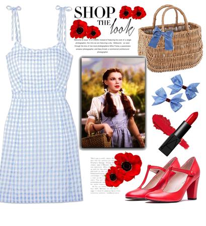 Dorothy Costume Under $100