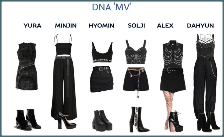 Evolution- DNA 'MV'