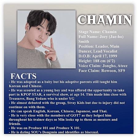 CHAMIN ATEAM PROFILE.