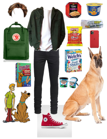 Shaggy Rogers and Scooby Lewk