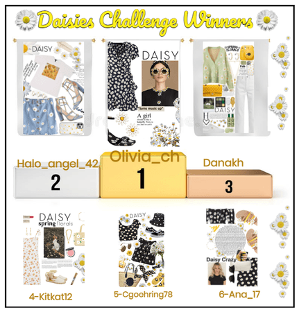 DAISIES CHALLENGE WINNERS