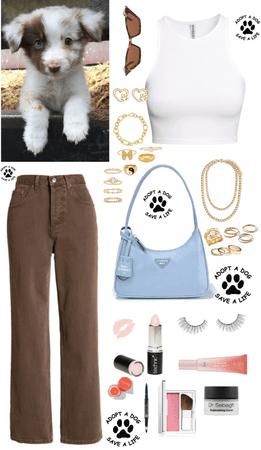 Dog Pallet Challenge 🐾🐾