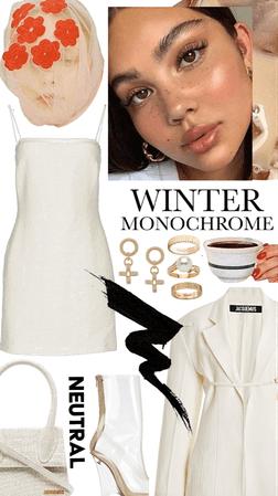 winter monochrome 🦢