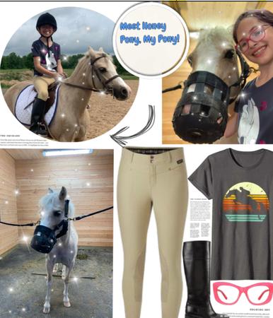 Meet my pony: honey pony