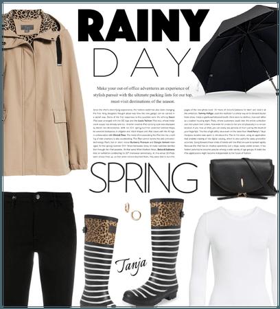 Rainy Day/Spring