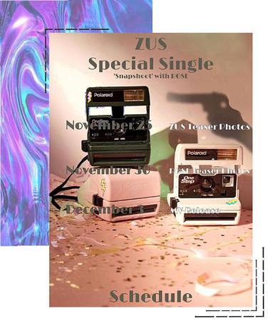 ZUS//Special Single 'Snapshoot' Schedule