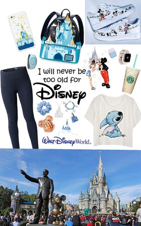 Disney world/land opening