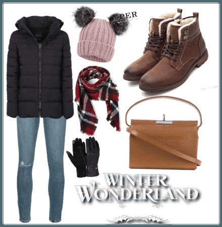 NY in winter