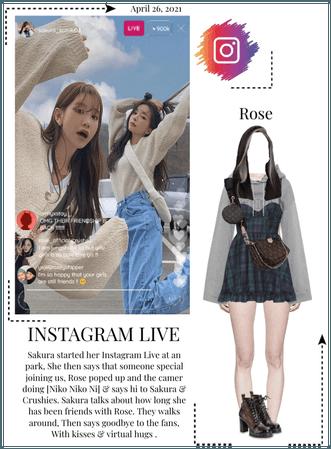 Crushes (호감) [Rose] Instagram Live