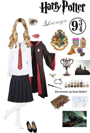 "If I was in the ""Harry Potter"" film franchise/went to Hogwarts"