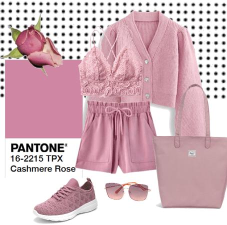 Cashmere Rose
