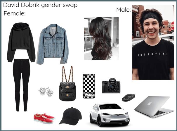 David Dobrik gender swap