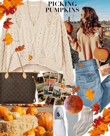 #Pumpkin patch fun🧡