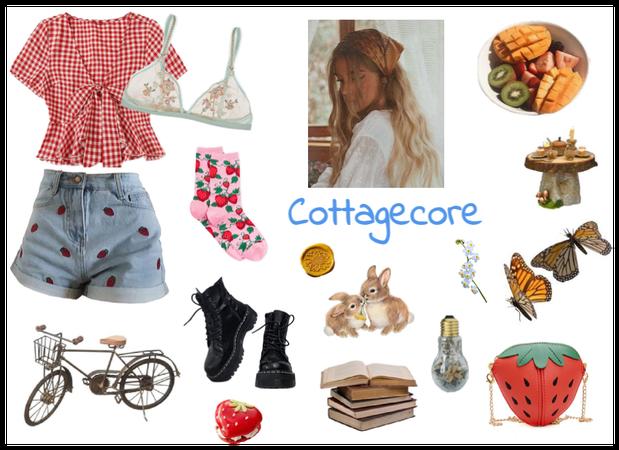 Core Aesthetic ~ Cottagecore