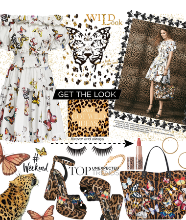 butterflies and leopards