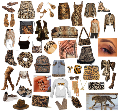 Cheetah day