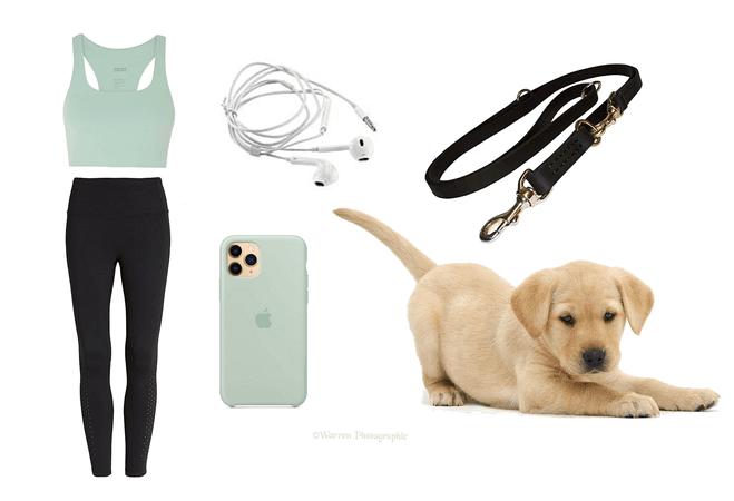 Run+Dog Walking