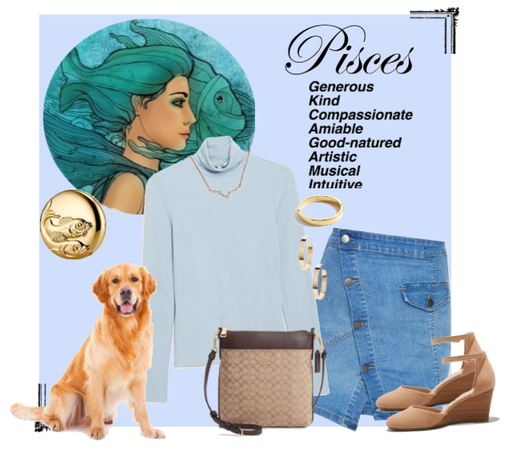 Picses Fashion