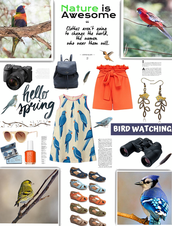 Spring Look/Bird Watching