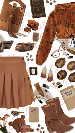 Brown Cropped Hoodie and Pleated Skirt