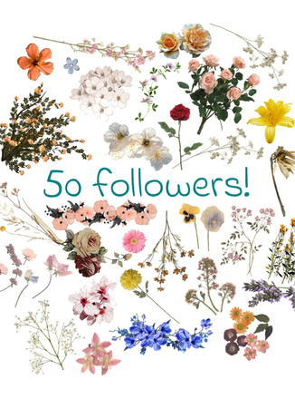 thanks for 50 followers