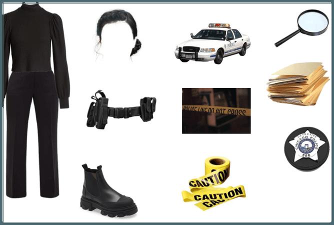 Detective/Investigator
