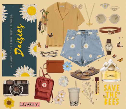 Daisy Season