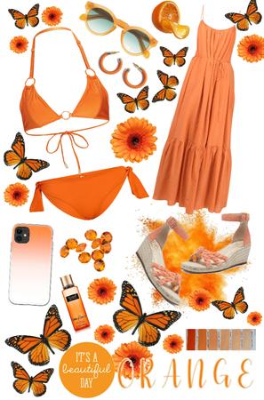 Orange on the beach
