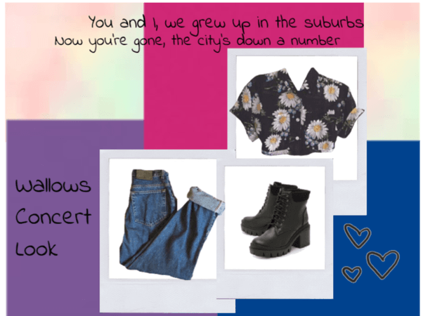 Wallows Concert Outfit Inspo #3