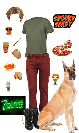 """Modern Scooby Doo: Norville """"Shaggy"""" Rogers"""