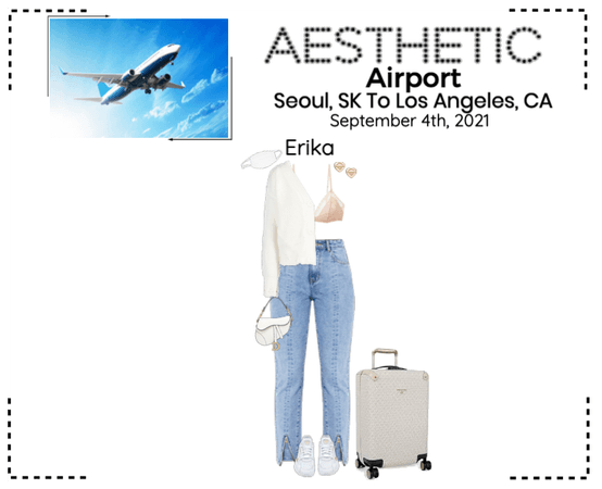 AESTHETIC (미적) [AIRPORT] Seoul, SK To Los Angeles, CA
