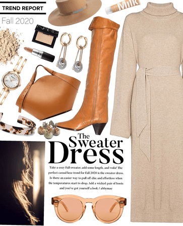 the sweater dress | fall trend