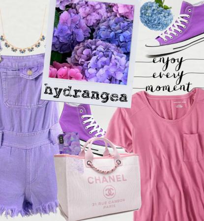 Hydrangea 🌿☘🌱