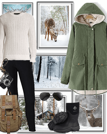Winter Cabin Photo Vacation