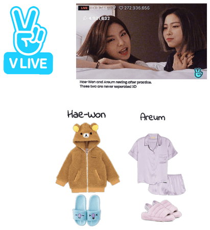 Hae-Won and Areum Vlive