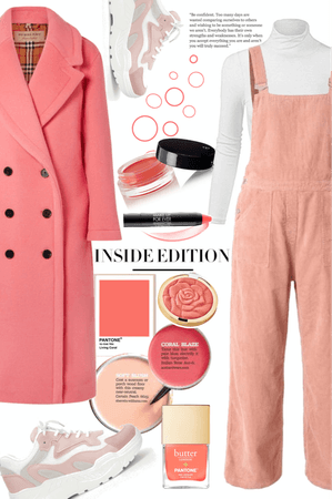 Color of The Year 2019 : Coral