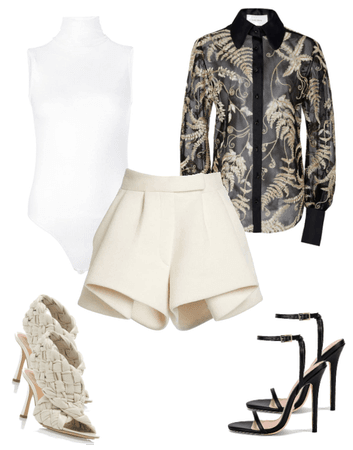 Blouse and dressy shorts