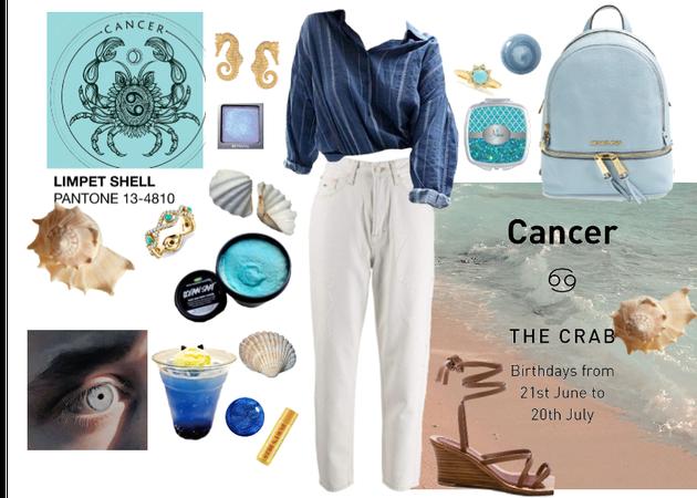 sea blue cancer crab