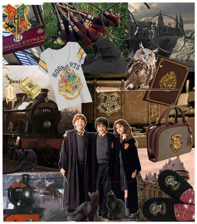 # Harry Potter inspired collage # Halloween costum