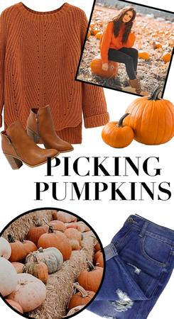 picking pumpkins!!🧡🧡🎃