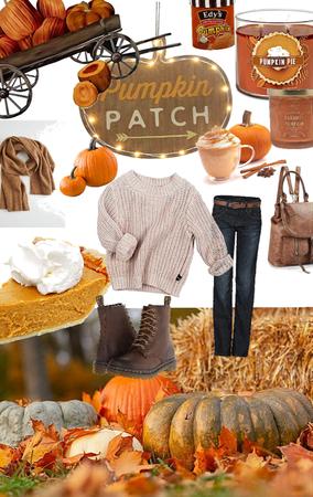 Pumpkins Patch Fun