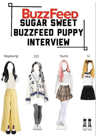 Sugar Sweet, Buzzfeed Puppy Interview