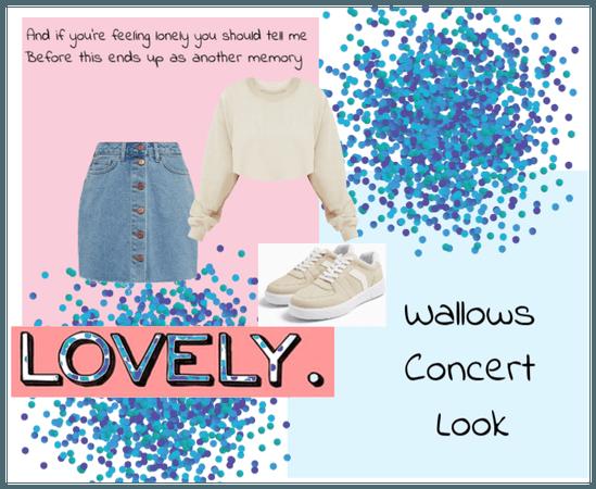 Wallows Concert Look Inspo #1