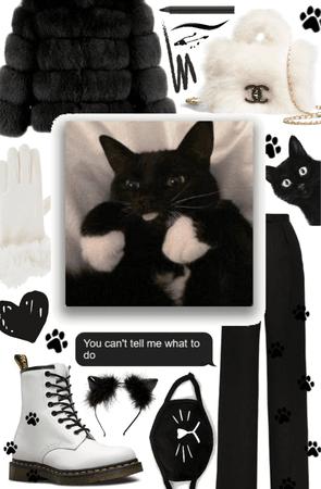 if my cat were human