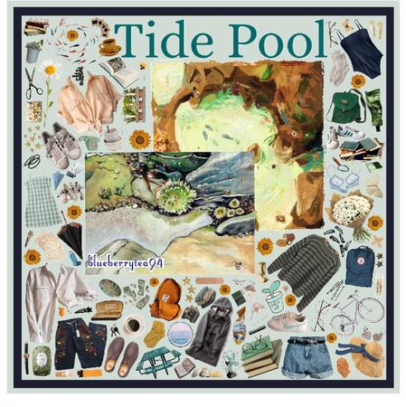 Tide Pool Moodboard