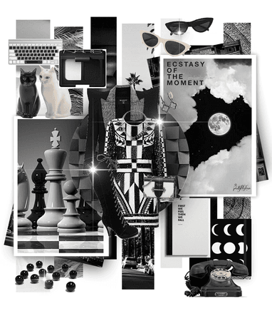 Point Of Hue: Dramatic White, Grey And Black