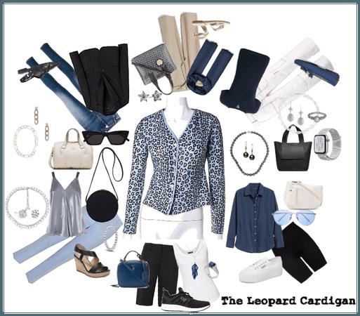 Focus; Leopard Cardigan