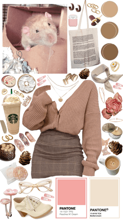Pollux's color palette- beiges & pinks