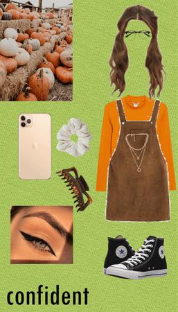 fall/pumpkin patch
