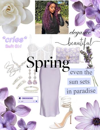 Lavender and Velvet